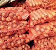 Морковь урожай 2017 оптом от производителя